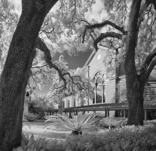 cathedral-oaks-ir-1